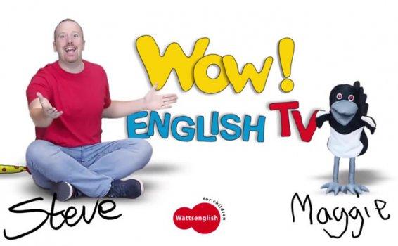 《WOW ENGLISH TV》307集 和Steve老师一起说英语 MP4视频 百度云网盘下载
