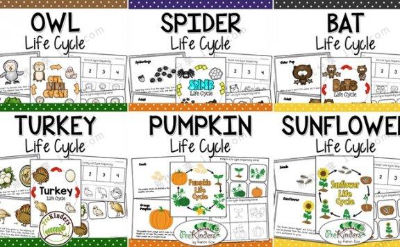 《Fall Life Cycle Science》自然生命科学6册英文作业纸 百度网盘下载