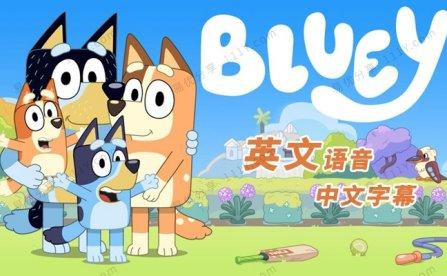 《Bluey布鲁伊》第一季全52集英文儿童启蒙动画MP4视频 百度网盘下载