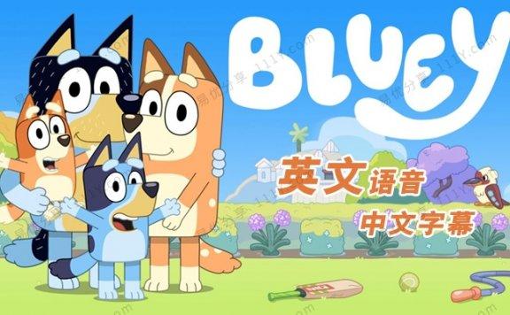 《Bluey布鲁伊》全52集英文儿童启蒙动画MP4视频 百度网盘下载